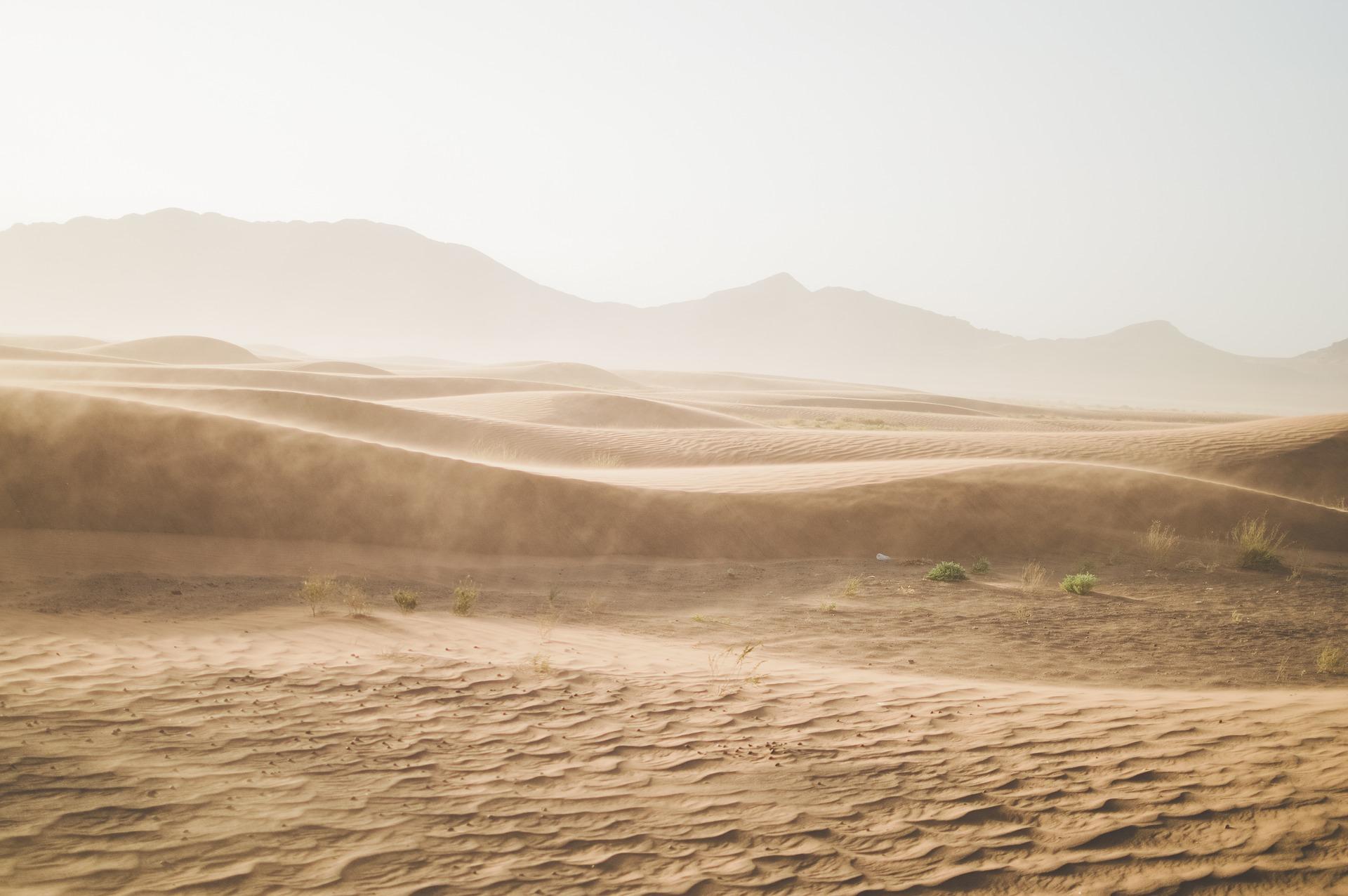 Dune Poétique